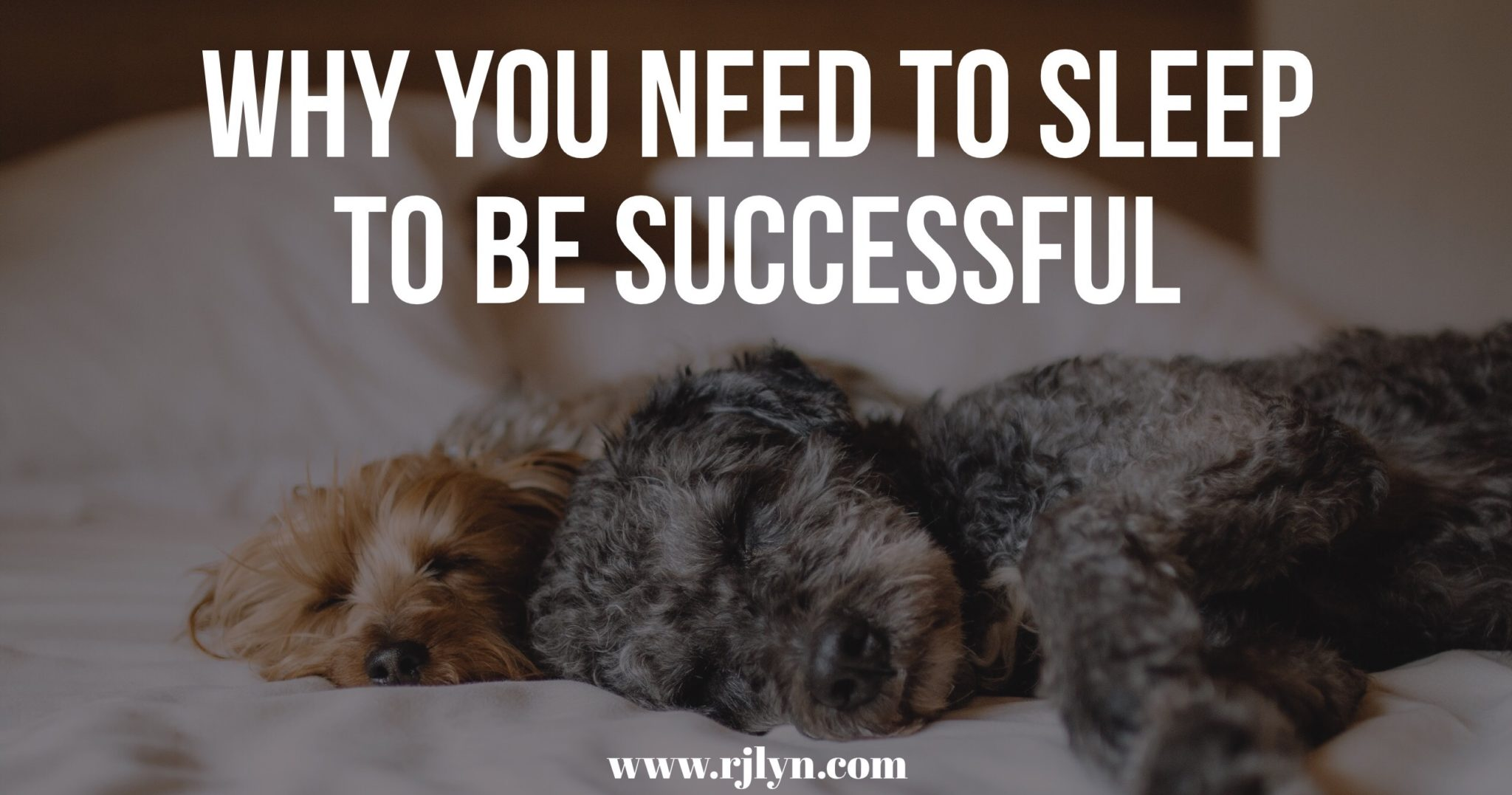 why you need to sleep to be successful